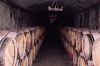 Cellars at Yvon Mau in Bordeaux.